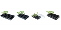 Planting and Sowing Essentials