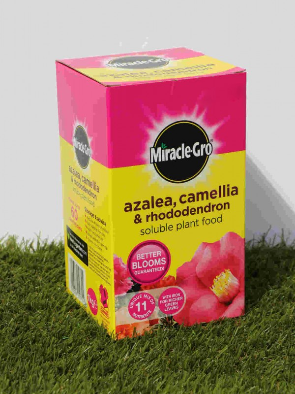 Azalea/Camelia/rhod Plant Food