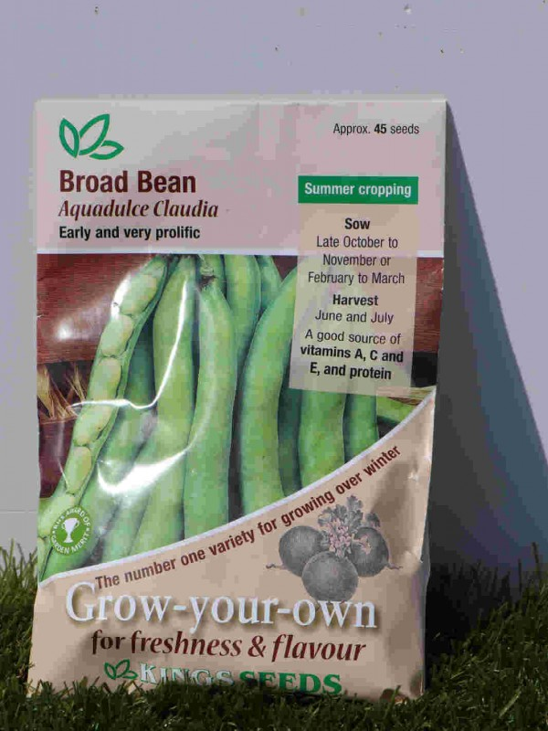 Broad Bean Aquadulce Claudia Seeds